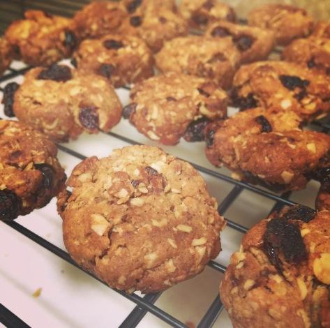 PB Oat Raisin Cookies (2)